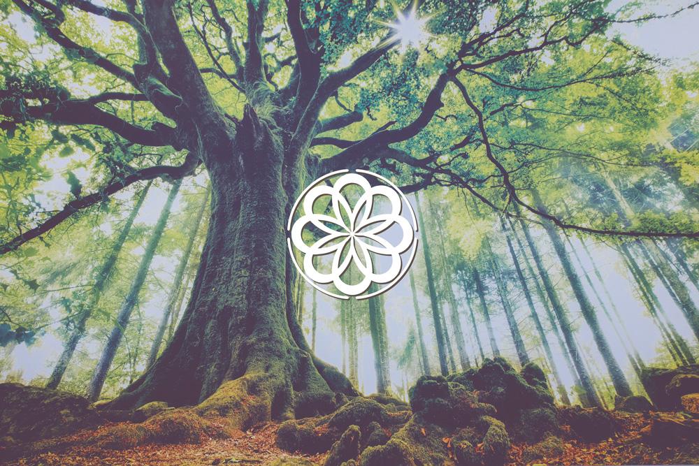 Blog de Arrieta osteopatia